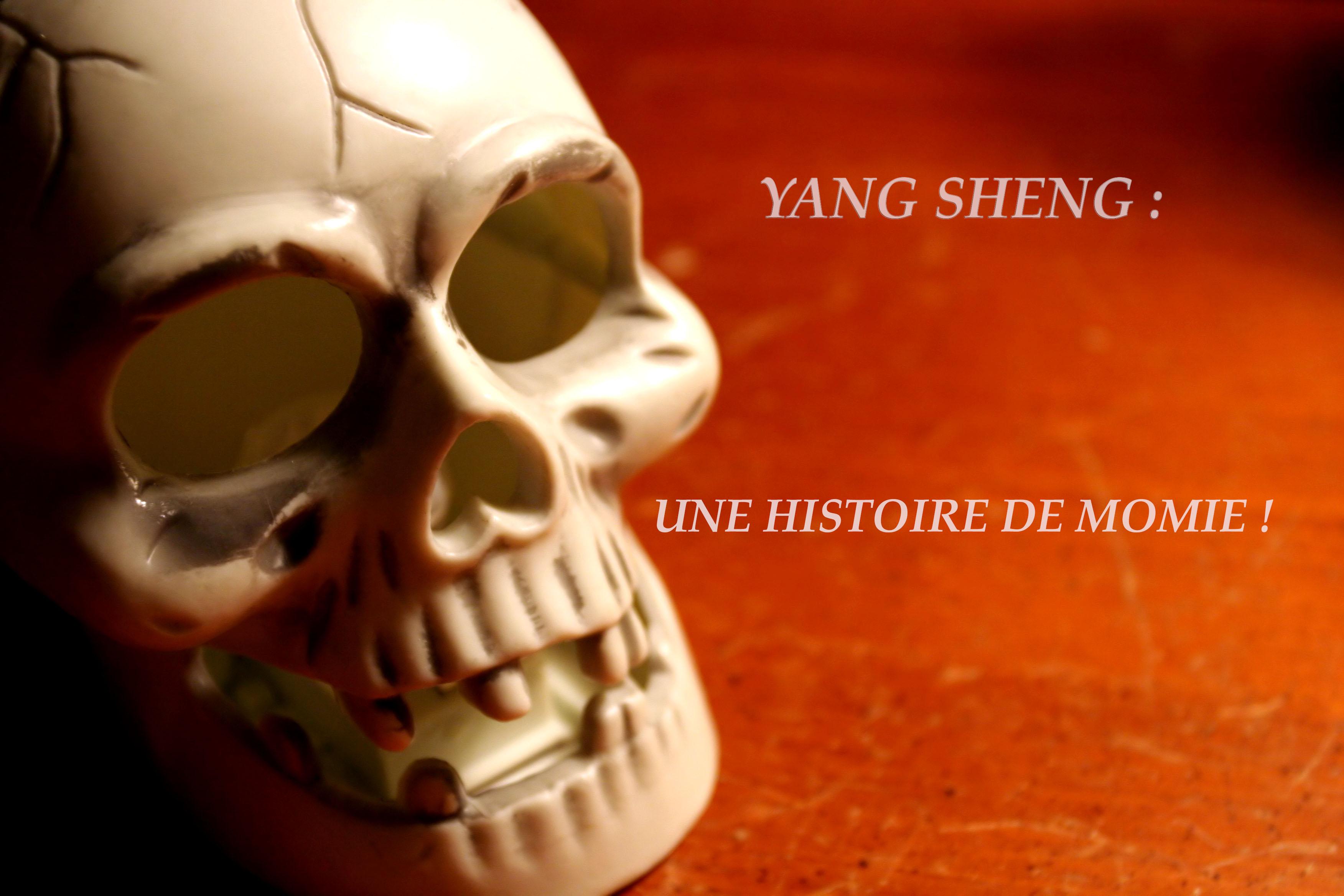 YANG SHENG: UNE HISTOIRE DE MOMIE !