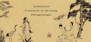SONDAGE: FORMATION EN GI GONG THERAPEUTIQUE