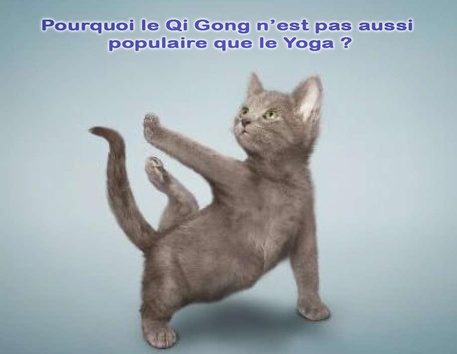 Pourquoi le Qi Gong n'est pas aussi populaire que le Yoga ?