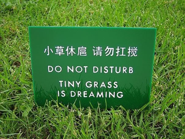 Médecine chinoise: traduire c'est trahir?