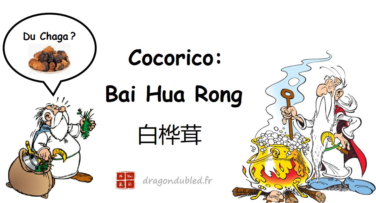 COCORICO : Bai Hua Rong le produit magique?