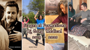 STAGES ET FORMATIONS EN QI GONG MÉDICAL (LIAO FA)